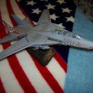Military Tomcat Jet F-14