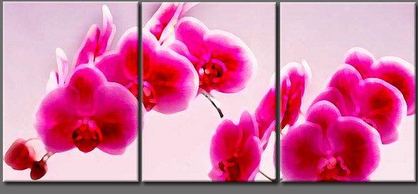 Modern flower oil paintings on Canvas flowers 200