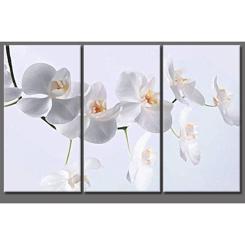 Modern Contemporary oil paintings on Canvas flower painting set 304
