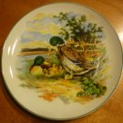 VINTAGE PORCELAIN DECORATIVE PLATE VIBRANT PICTURE DUCKS JAPAN