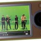 Microsoft Zune digital Media Listen Music Photo Song Storage Player 30GB