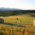 8x10 Photo ~ Scenic #002 Hayfield in Montana