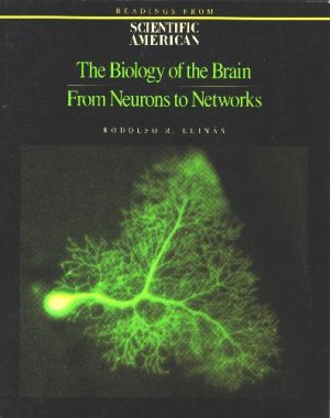 The Biology of the Brain: From Neurons to Networks