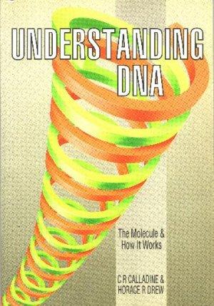 Understanding DNA: The Molecule and How It Works