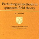 Path Integral Methods in Quantum Field Theory