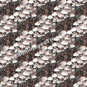 White Mushrooms Tiled Pattern Nature Background Digital File