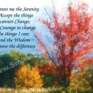 Autumn Scene Inspirational Serenity Prayer Printable Digital File Card