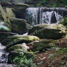 Woodland Waterfall Digital Printable Nature Photo 5x7