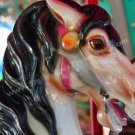 Carousel Horses No. 4 Digital Printable Photo 5x7