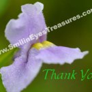 Lovely Purple Wild Flower Printable Thank You Card