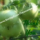 Green Tomatoes Raindrops Nature Printable Thank You Card