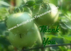 Green Tomatoes Raindrops Nature Printable Thank You Card
