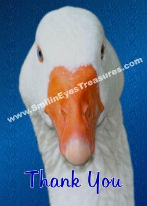 White Goose Face Animal Printable Thank You