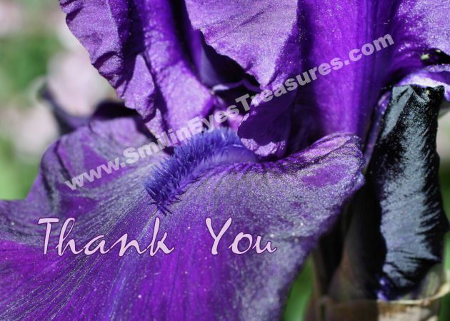 Macro Purple Iris Petal Flower Printable Thank You Card