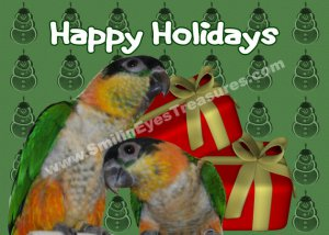 Caique Parrots Cute Animal Printable Christmas Holiday Card