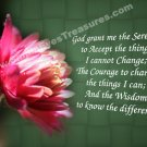 Serenity Prayer Red Flower Inspirational Printable Digital File Card