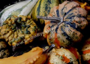 Fancy Gourds Digital Printable Photo Painting 5x7