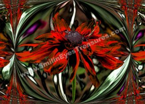 Abstract Red Daisy Digital Printable Flower Photo 5x7