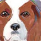 Cavalier King Charles Blenhiem Portrait Tile
