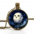 Owl Pendant Necklace - Owl Jewelry - Antique Style Bronze Baby White Owl Bird Art - Picture Pendant
