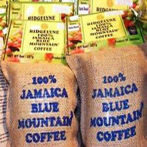 100%  Jamaican Blue Mountain Coffee freshly roasted 10 lbs