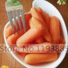 200pcs Little Finger Carrot Mini Carrots Orange Juicy Sweet Vegetable Seeds