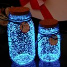 2X 10G bags Fluorescent  luminous Particles Glow Pigment Bright Glow Sand Glowing in the Dark Sand