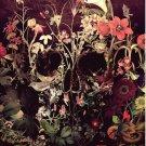 Beautiful flower taro Figure Canvas Wedding Decoration Art DIY  Pa«int by numbers