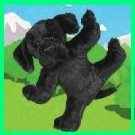 Webkinz BLACK LAB Webkins RARE HTF New!!