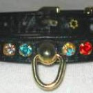 Dog Collar Rhinestone Turquoise 14 x 3/8 Collars