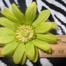 Fab Floral Lime Green Spider Gerber Daisy Flower Hair Bow on Lined Alligator Clip ~ Free Shipping