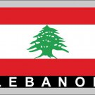 2 Temporary Skin Lebanon Country Flag Tattoo Sticker Party Favors Tattoos Stickers