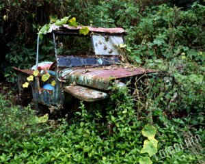 Hawaiian Truck - Big Island, Hawaii - 8x10 - Original Fine Art Photograph - Free Shipping