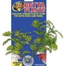 Zoo Med Betta Plant Window Leaf