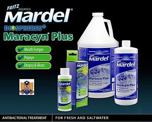 Fritz Aquatics Mardel Maracyn Plus 8FL  OZ (236 ML) Treats 236 Gallons