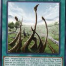 Yugioh Duelist Pack Rivals of the Pharaoh Dragon Shrine DPRP-EN029