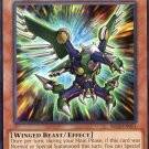 Yugioh - Secrets of Eternity - Raidraptor Vanishing Lanius - SECE-EN011