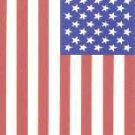 1991 Score #737 American Flag/Peace