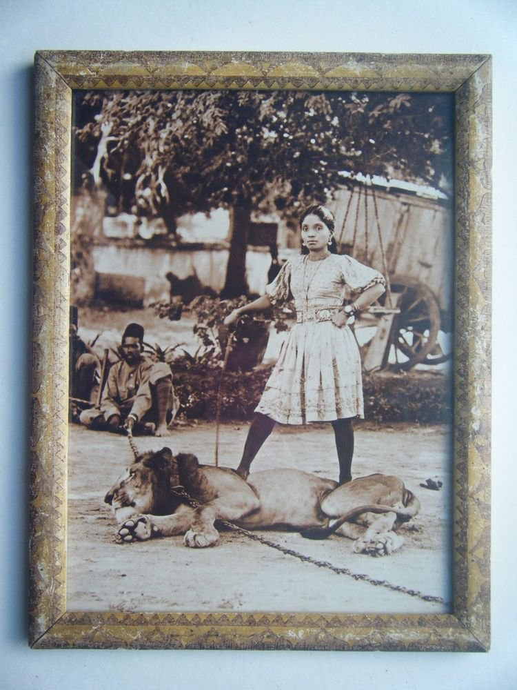 Lion Tamer Lady Woman Photograph, Vintage Photo in Old Wooden Frame India #2728