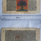 Original Antique Manuscript Old Jain Cosmology New Hand Painting Rare India #549