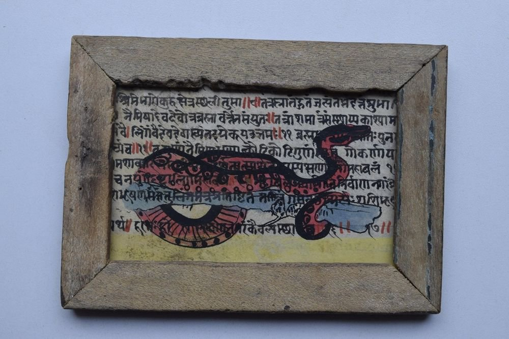 Snake Painting on Manuscript Hand Color Painting in Old Wooden Frame India #2994