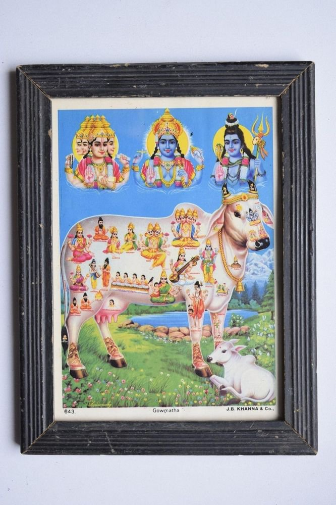 Holy Cow All Gods Rare Old Religious Print in Old Wooden Frame India Art #3136
