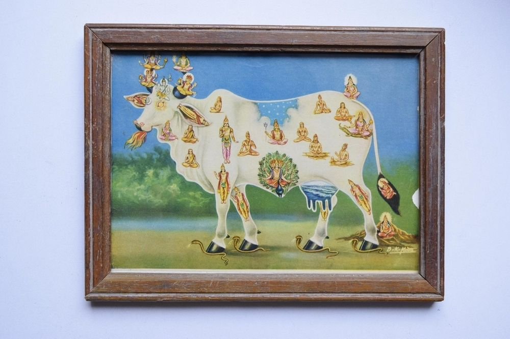 Holy Cow All Gods Rare Old Religious Print in Old Wooden Frame India Art #3135