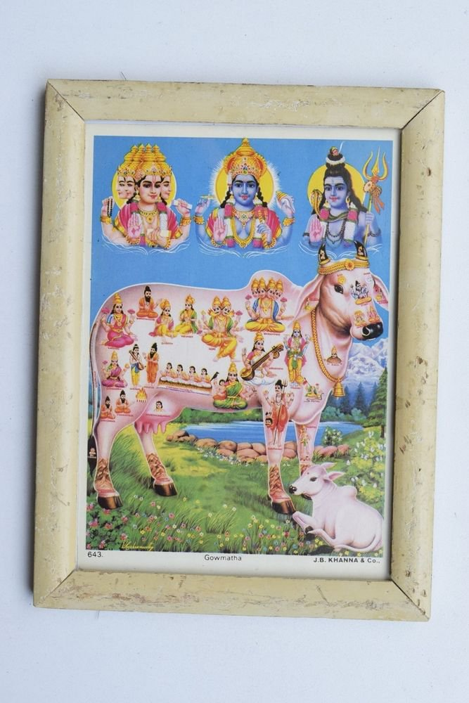 Holy Cow Collectible Rare Old Religious Print in Old Wooden Frame India #3265