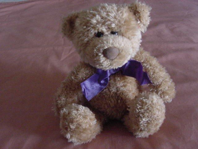 "Gund Stride Rite Light Brown Bear Stuffed Plush 7"""