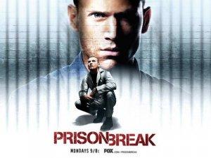 Prison Break Season 1 and 2  ONLY FOR PC DIVX FORMAT
