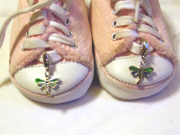 Dragon fly shoe charms