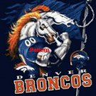 Denver Broncos Mascot #2. Cross Stitch Pattern. PDF Files.