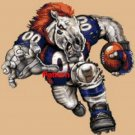 Denver Broncos Mascot #3. Cross Stitch Pattern. PDF Files.