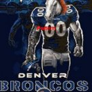 Denver Broncos Mascot #4. Cross Stitch Pattern. PDF Files.